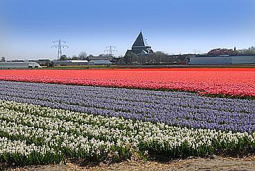 Duinpolderweg moet ook in noord holland opnieuw ter for 4 holland terrace needham ma
